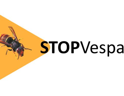 logo Stopvespa