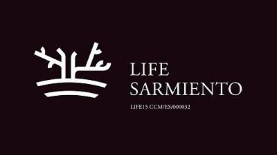 LifeSarmiento logo