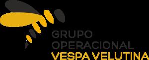 VespaVelutina logo