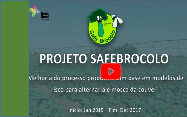 SafeBrocolovideo2