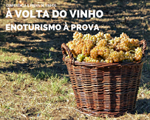 Conferencia à volta do vinho