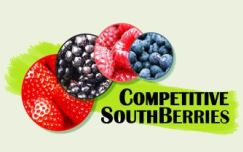 Competitive southberries GO
