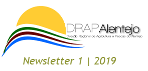 DRAPALNewsletter1 19