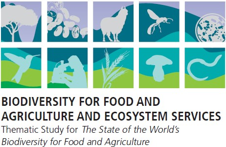 Biodiversity for food and agriculture and ecosystem services
