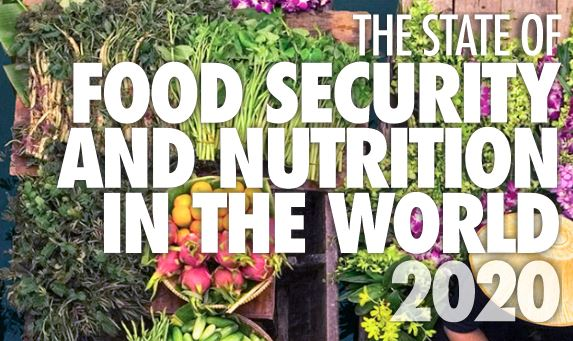 FAO food nutrition