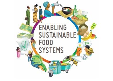 FAO innovators handbook img