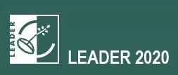 LEADER2020 logo