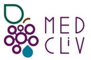 MEDCLIVE project