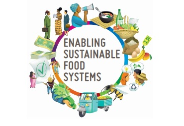 FAO enabling sust food sys