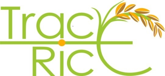 TRACE RICE