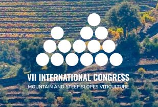 VII international congress viticulture