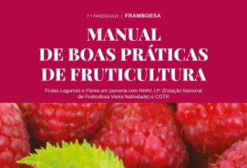 iniav manual framboesa