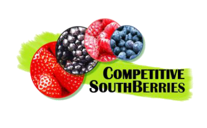 CompetitiveSouthBerries logo
